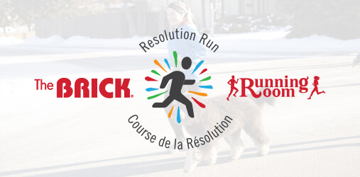 The Brick Resolution Run